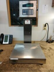 GSE Bench Scale
